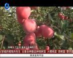 中国农资秀 (2020-10-18)