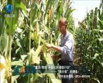 中国农资秀 (2020-10-23)
