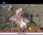 天天农高会 (2020-10-30)