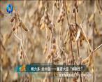 中国农资秀 (2020-11-01)