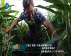 中国农资秀 (2020-11-06)
