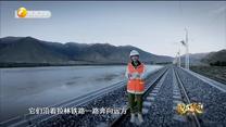 我的家乡在陕西 (2020-11-06)