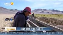 今日点击 陕西援藏干部在噶尔