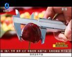 天天农高会 (2020-11-11)