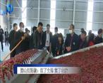 农村大市场 深山红辣椒:红了土地 富了农家