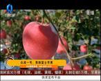 天天农高会 (2020-11-28)