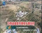中国农资秀 (2020-11-29)