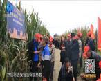 中国农资秀 (2020-12-03)