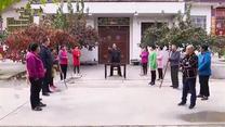 [百家碎戲]審雞