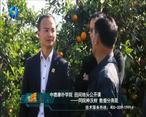中国农资秀(2020-12-17)
