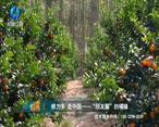 中国农资秀 (2020-12-24)