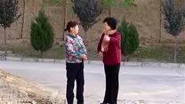 [百家碎戲]兩個桂花買雞蛋