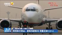"""【回眸""""十三五"""" 展望""""十四五""""】陕西航空货运:新航线新航司 货量全国TOP10"""