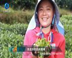 中国农资秀 (2021-01-13)