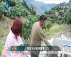 中国农资秀 (2021-01-16)