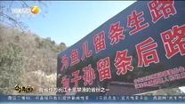今日点击 长江十年禁渔 陕西在行动