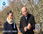 中国农资秀(2021-02-05)