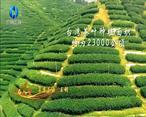 中国农资秀 (2021-02-10)