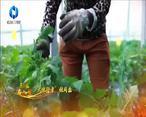 中国农资秀 (2021-02-15)