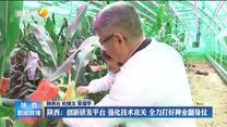 【在习近平新时代中国特色社会主义思想指引下】陕西:创新研发平台 强化技术攻关 全力打好种业翻身仗