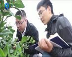 中国农资秀 (2021-03-27)