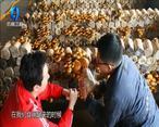 中国农资秀 (2021-04-03)