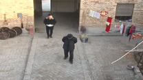 [百家碎戲]危險的干兒子
