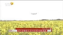 西咸新區空港新城首屆油菜花節開幕