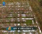 中国农资秀 (2021-05-08)