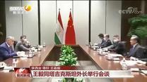 王毅同塔吉克斯坦外长举行会谈