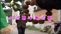 百家在线观看日韩AV电影 小诸葛斗老诸葛