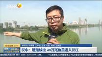 第一新闻午间播报 (2021-06-09)