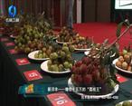 中国农资秀 (2021-06-10)