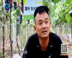 中国农资秀 (2021-06-25)