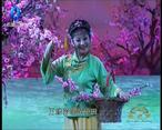 秦之声大剧院 (2021-06-27)