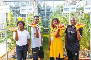 """都匀的""""种子""""在几内亚开花结果"""