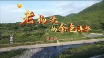 百家在线观看日韩AV电影 老杨头的金色年华(三)