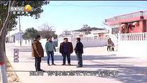百家在线观看日韩AV电影 路灯亮了