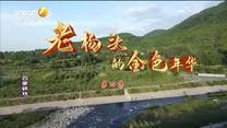 百家在线观看日韩AV电影 老杨头的金色年华(四)