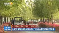 【在习近平新时代中国特色社会主义思想指引下】认真践行绿水青山就是金山银山理念   三秦大地山清水秀的画卷正在绘就