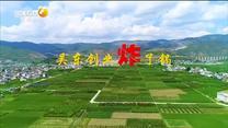 百家在线观看日韩AV电影 吴东创业炸了锅