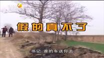 百家在线观看日韩AV电影 假的真不了