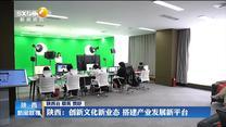 【在习近平新时代中国特色社会主义思想指引下】陕西:创新文化新业态 搭建产业发展新平台