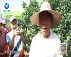 中国农资秀(2021-08-16)