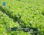 中国农资秀 (2021-08-21)