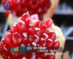 中国农资秀 (2021-09-02)