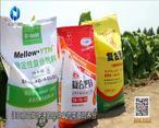 中国农资秀(2021-09-06)